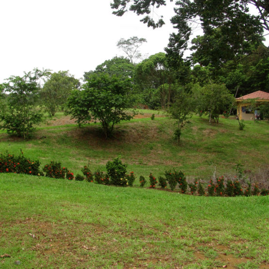 Costa Rica Properties for Sale - Lot 52