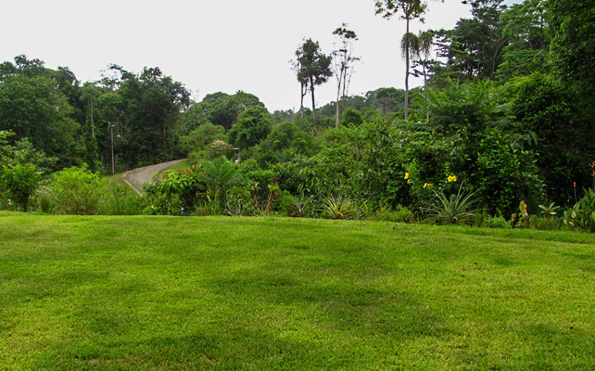 Costa Rica Properties for Sale - 2.5 Acres Property